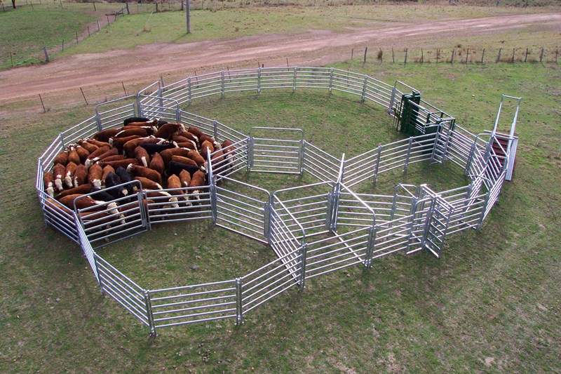 Customized livestock stockyards